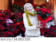 Positive mature woman buying flowers at Christmas Fair. Стоковое фото, фотограф Яков Филимонов / Фотобанк Лори
