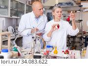 Купить «Biochemists recording experimental procedure and results», фото № 34083622, снято 24 января 2019 г. (c) Яков Филимонов / Фотобанк Лори