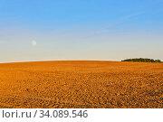 Купить «Evening plowed field under the rising moon», фото № 34089546, снято 4 июня 2020 г. (c) Евгений Харитонов / Фотобанк Лори