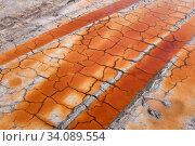 Tracks of wheels on desert soil. Стоковое фото, фотограф Евгений Харитонов / Фотобанк Лори