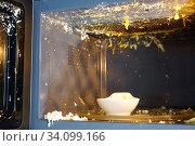 Купить «Яйцо взорвалось в микроволновке. Неправильное приготовления яйца в микроволновой печи», фото № 34099166, снято 6 августа 2019 г. (c) ирина реброва / Фотобанк Лори