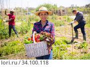 Woman gardener holding basket with harvest of fresh vegetables. Стоковое фото, фотограф Яков Филимонов / Фотобанк Лори