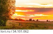 Купить «Scenic view over the field. Fantastic bright sky with beautiful clouds at sunset day.», фото № 34101062, снято 13 мая 2020 г. (c) Акиньшин Владимир / Фотобанк Лори