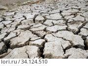 Купить «Durch lange Trockenheit aufgeplatzte Erde mit tiefen Spalten und Trockenrissen. Querformat. Long drought causes dry cracks and deep crevices in the soil. Horizontal format.», фото № 34124510, снято 13 июля 2020 г. (c) easy Fotostock / Фотобанк Лори
