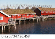 Coastal Norwegian town, traditional red wooden houses (2016 год). Стоковое фото, фотограф EugeneSergeev / Фотобанк Лори