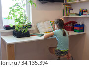 Girl is teaching at home on a textbook at the desk. Стоковое фото, фотограф Иванов Алексей / Фотобанк Лори