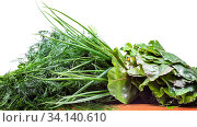 Wet fresh bundles of beet greens, scallions and dill on wooden table isolated on white background. Стоковое фото, фотограф Zoonar.com/Valery Voennyy / easy Fotostock / Фотобанк Лори