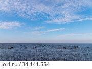 Baltic Sea, coastal landscape with shore water. Стоковое фото, фотограф EugeneSergeev / Фотобанк Лори