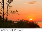 Colorful sunset over Gulf of Finland, summer night. Стоковое фото, фотограф EugeneSergeev / Фотобанк Лори