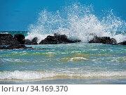 Wasserkraft, Wellen brechen sich an den Lavafelsen der Küste, Insel Isabela, Galapagos Inseln, Ecuador / Hydrodynamic power, waves breaking at the lava... Стоковое фото, фотограф Zoonar.com/Mike / easy Fotostock / Фотобанк Лори