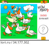 Cartoon Illustration of Educational Counting Task for Children with Duck Birds Animal Characters Group. Стоковое фото, фотограф Zoonar.com/Igor Zakowski / easy Fotostock / Фотобанк Лори