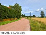 Rural road between village and fields with ripe rye. Aland Islands (2014 год). Стоковое фото, фотограф Валерия Попова / Фотобанк Лори