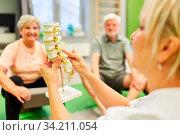 Ärztin oder Physiotherapeutin mit einem Wirbelsäule Modell in einer Rückenschule für Senioren. Стоковое фото, фотограф Zoonar.com/Robert Kneschke / age Fotostock / Фотобанк Лори