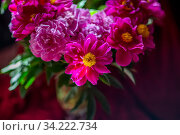Букет красивых красных пионов стоит в вазе на столе в доме. Стоковое фото, фотограф Николай Винокуров / Фотобанк Лори