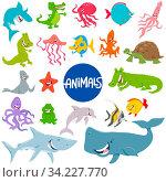 Cartoon Illustration of Marine Life Animal Characters Set. Стоковое фото, фотограф Zoonar.com/Igor Zakowski / easy Fotostock / Фотобанк Лори