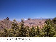 Gran Canaria, landscape of the central part of the island, Las Cumbres, ie The Summits. Стоковое фото, фотограф Tamara Kulikova / Фотобанк Лори