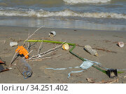 Купить «Plastic pollution on Danube River coastline in Danube Biosphere Reserve. Coronavirus is contributing to pollution, as discarded face masks clutter riverside Danube along with plastic and other trash», фото № 34251402, снято 11 июля 2020 г. (c) Некрасов Андрей / Фотобанк Лори