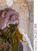 Купить «Source in the mountains (Greece, Peloponnese)», фото № 34253306, снято 12 марта 2020 г. (c) Татьяна Ляпи / Фотобанк Лори