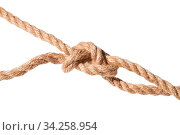 Knot of slipped figure-eight noose close up on thick jute rope isolated on white background. Стоковое фото, фотограф Zoonar.com/Valery Voennyy / easy Fotostock / Фотобанк Лори