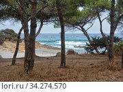 Impression der Kueste im Osten der Insel Sardinien im Mittelmeer, hier bei Sas Linnas Siccas. Стоковое фото, фотограф Zoonar.com/JOACHIM G. PINKAWA / easy Fotostock / Фотобанк Лори