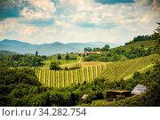 Famous Heart shaped wine road in Slovenia in summer, Herzerl Strasse, vineyards in summer, Spicnik tourist spot. Стоковое фото, фотограф Zoonar.com/Przemyslaw Iciak / easy Fotostock / Фотобанк Лори