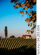 Winery in Austria Styria tourist spot. Стоковое фото, фотограф Zoonar.com/Przemyslaw Iciak / easy Fotostock / Фотобанк Лори