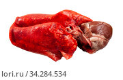 Купить «Raw lamb lungs and liver», фото № 34284534, снято 3 августа 2020 г. (c) Яков Филимонов / Фотобанк Лори