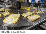 Купить «ice cream production and packaging», фото № 34285698, снято 12 мая 2017 г. (c) Syda Productions / Фотобанк Лори