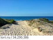 Ein Strandaufgang zu einem kilometerlangen Sandstrand an der nördlichen Kueste der Insel Sardinien im Mittelmeer. Стоковое фото, фотограф Zoonar.com/JOACHIM G. PINKAWA / easy Fotostock / Фотобанк Лори
