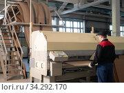 Modern industrial factory producing cardboard. Стоковое фото, фотограф Гурьянов Андрей / Фотобанк Лори
