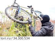 Zwei Diebe bei Fahrraddiebstahl in der Stadt heben Fahrrad über einen Zaun. Стоковое фото, фотограф Zoonar.com/Robert Kneschke / age Fotostock / Фотобанк Лори