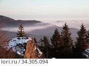 Купить «Nebel ueber Wald», фото № 34305094, снято 6 августа 2020 г. (c) easy Fotostock / Фотобанк Лори