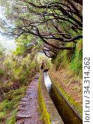 Hiking on Madeira island, Portugal. Стоковое фото, фотограф Zoonar.com/Galyna Andrushko / easy Fotostock / Фотобанк Лори