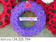Купить «A wreath of purple poppies commemorating animals that died in war laid on the war memorial in Weston-super-Mare, UK on Remembrance Sunday 2019.», фото № 34325794, снято 4 августа 2020 г. (c) age Fotostock / Фотобанк Лори
