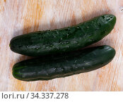 Many ripe cucumbers on wooden surface. Стоковое фото, фотограф Яков Филимонов / Фотобанк Лори
