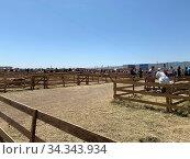 Пастбище для проведения жертвоприношения скота, на праздник Курбан Байрам. Дагестан Россия. Редакционное фото, фотограф Махсумов Шамиль / Фотобанк Лори