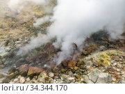 Exciting view of volcanic landscape, erupting fumarole, aggressive hot spring, gas-steam activity in crater of active volcano. Стоковое фото, фотограф А. А. Пирагис / Фотобанк Лори