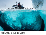 Guide waiting on iceberg for divers exploring Greenland Sea following spring ice melt. Tasiilaq, East Greenland. April 2018. Стоковое фото, фотограф Franco  Banfi / Nature Picture Library / Фотобанк Лори