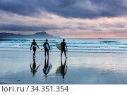Surfers on ocean beach in New Zealand. Стоковое фото, фотограф Zoonar.com/Galyna Andrushko / easy Fotostock / Фотобанк Лори