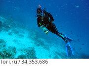 Junge Frau beim tauchen am Korallenriff auf den Malediven. Стоковое фото, фотограф Zoonar.com/manfred2000 / easy Fotostock / Фотобанк Лори
