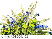 Beautiful floral composition from white and blue flowers and variegated... Стоковое фото, фотограф Zoonar.com/Rvo233 / easy Fotostock / Фотобанк Лори