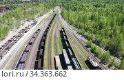 Flight over cargo trains carriage at railway station. Aerial view of railroad rail yard. Many trains. Стоковое видео, видеограф Евгений Ткачёв / Фотобанк Лори