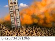 Изменение климата, глобальное потепление - термометр в раскаленной высохшей земле. Стоковое фото, фотограф NataMint / Фотобанк Лори