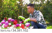 middle-aged man taking care of flowers at garden. Стоковое видео, видеограф Syda Productions / Фотобанк Лори