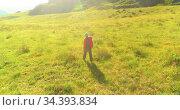 Flight over Backpack hiking tourist walking across green mountain field. Huge rural valley at summer day. Стоковое видео, видеограф Александр Маркин / Фотобанк Лори