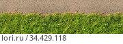 Grüne Gras Linie als Abgrenzung von oben als Hintergrund Header. Стоковое фото, фотограф Zoonar.com/Robert Kneschke / age Fotostock / Фотобанк Лори