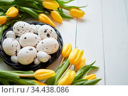 Beautiful yellow tulips with dotted quail and chicken eggs in nest... Стоковое фото, фотограф Zoonar.com/Daniel Dash / easy Fotostock / Фотобанк Лори
