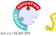 Education, skills, experience. The check mark in the form of a puzzle. Стоковая анимация, видеограф WalDeMarus / Фотобанк Лори