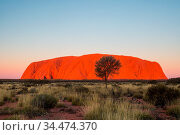 Majestic Uluru at sunset on a clear winter's evening in the Northern... Стоковое фото, фотограф Zoonar.com/Chris Putnam / easy Fotostock / Фотобанк Лори