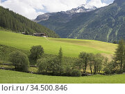 Riva di Tures /Rein in Taufers, Vallee du Riva (Val di Riva en italien... Стоковое фото, фотограф Christian Goupi / age Fotostock / Фотобанк Лори
